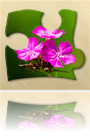 Bright Puzzles: Flowers